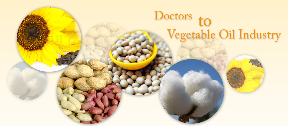 veg oil extraction consultant, vegetable oil extraction